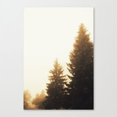 Now you call it summer? Canvas Print