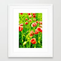 poppies Framed Art Prints featuring Poppies by Falko Follert Art-FF77
