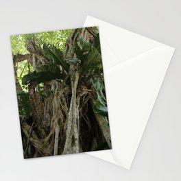 Wild Belize Jungle Stationery Cards