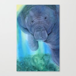 I See You Canvas Print