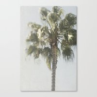 palm tree Canvas Prints featuring Palm Tree by Pure Nature Photos