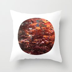 Planetary Bodies - Japanese Maple Throw Pillow