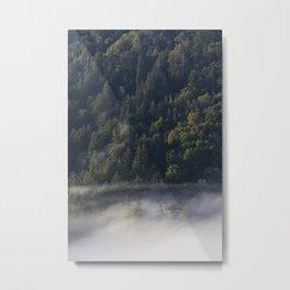 Big Sur Forest Metal Print