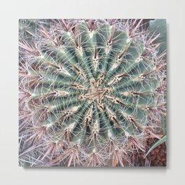 Cacti texture Metal Print