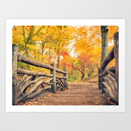 Autumn Path Central Park New York City Art Print
