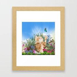 Ginger Kitten Playing with a Butterfly Framed Art Print