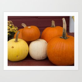 Freshly picked assortment of fall pumpkins, gourds, Autumn Decorations Art Print