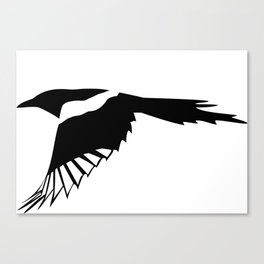 Pica Pica (magpie)  one Galery Giftshop Canvas Print