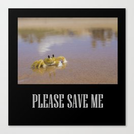 Please Save Me Canvas Print