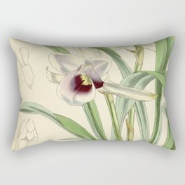 Cochleanthes discolor Orchid 1855 Rectangular Pillow