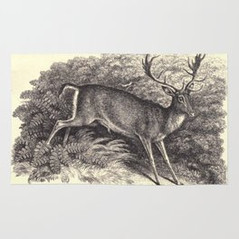 Antique Deer Rug