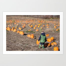 Searching For A Pumpkin Art Print