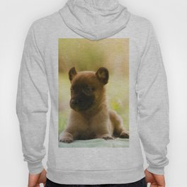 Malinois puppies in the soap blowing game Hoody