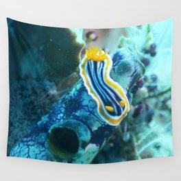 Yellow and blue striped chromodoris nudi Wall Tapestry