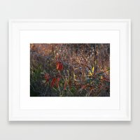 the wire Framed Art Prints featuring Wire by Adrienne Heinig
