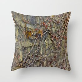 Wall climbers Throw Pillow