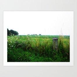 Fence & Field Art Print