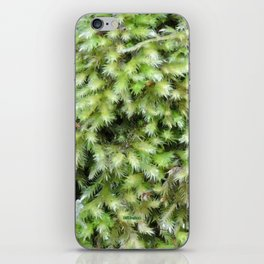 TEXTURES -- Moss on a Tree Trunk iPhone Skin