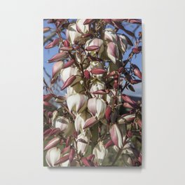 Yucca In Bloom Metal Print