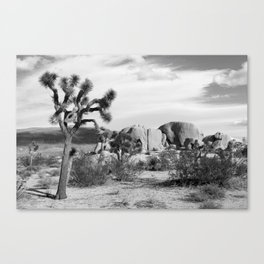 Black and White Joshua Tree National Park Canvas Print