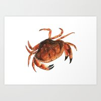 crab Art Prints featuring Crab by Trinity Mitchell