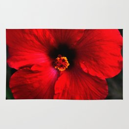 Red Hibiscus in my Face Rug