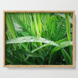 green grass Serving Tray
