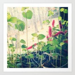 Patterson floral Art Print