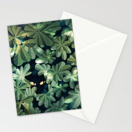 Where´s the kitty? Stationery Cards