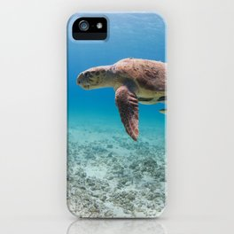 Swimming With Dinosaurs iPhone Case