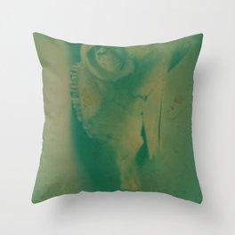 Cow Skull Polaroid Throw Pillow