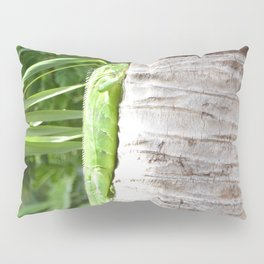 Just Hangin Out Pillow Sham