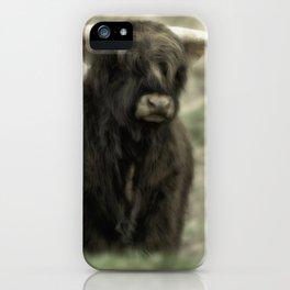 Highland Cattle III iPhone Case