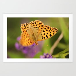 Flying Nature Art Print