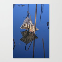 Only in Still Water Canvas Print