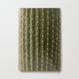 Plant Patterns - Cactus Prickles Metal Print