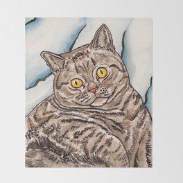 Grey Cat Throw Blanket