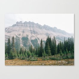 Mountain Forest - Landscape Photography Canvas Print