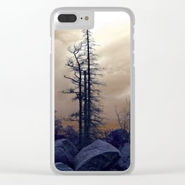 Dead Tree At Needles Highway Clear iPhone Case