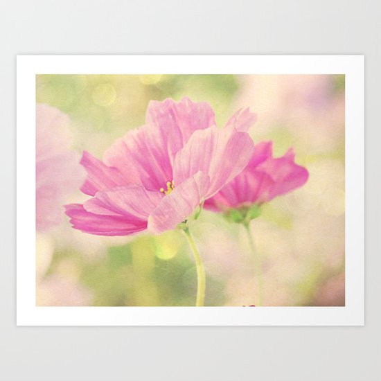 Cosmos in the Pink I Art Print