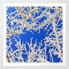 Bright Winter Blues Art Print