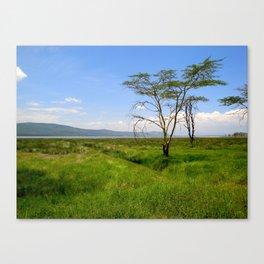 Lush Lake Nakuru Canvas Print