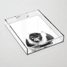 Black and white lemur animal portrait Acrylic Tray