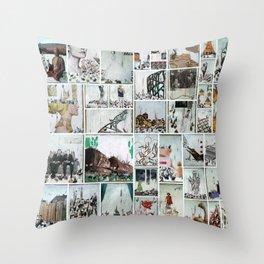 100 Days of Bunnies Poster  Throw Pillow
