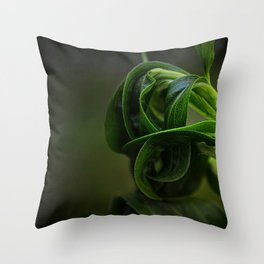 All Wound Up Throw Pillow