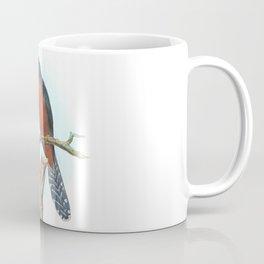 Chestnut Breasted Cuckoo, tropical bird in the nature of Australia & Indonesia Coffee Mug