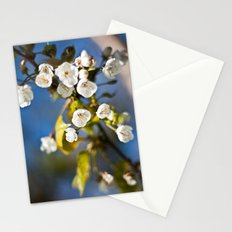 Spring is Near Stationery Cards