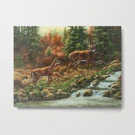 Deer and Waterfall Metal Print