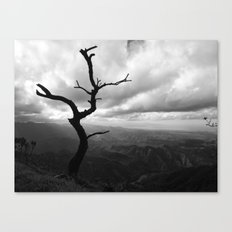 My point of view Canvas Print