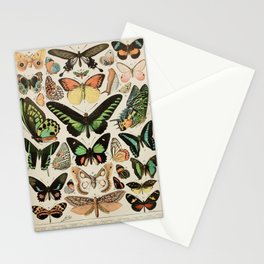 Papillon II Vintage French Butterfly Chart by Adolphe Millot Stationery Cards